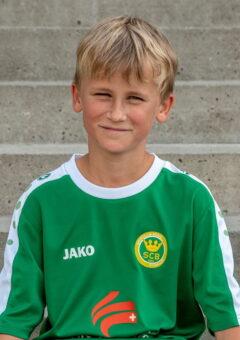 Damian 2009