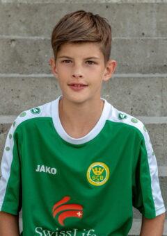 Fabian 2009